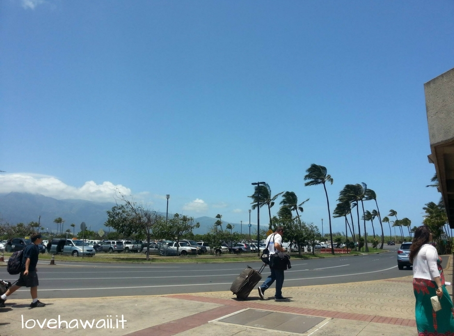 Una raccolta di cartoline Hawaiane, il nostro viaggio tra parole ed immagini