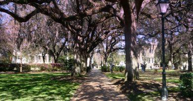Indimenticabile Georgia, Unforgettable Savannah