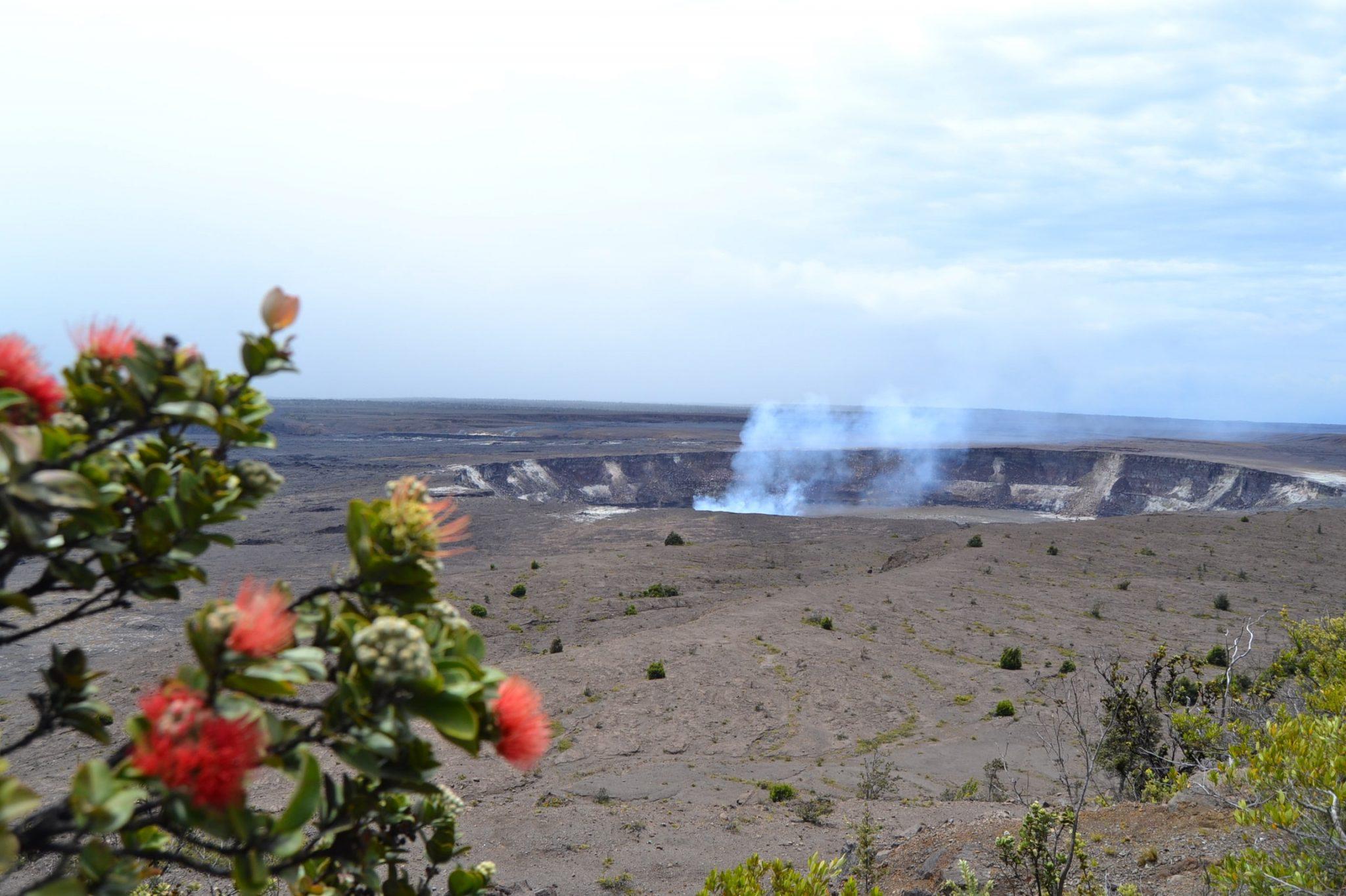 Il vulcano vivo